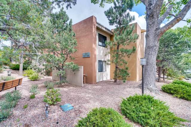 941 Calle Mejia, 1610, Santa Fe, NM 87501 (MLS #201904302) :: The Desmond Group