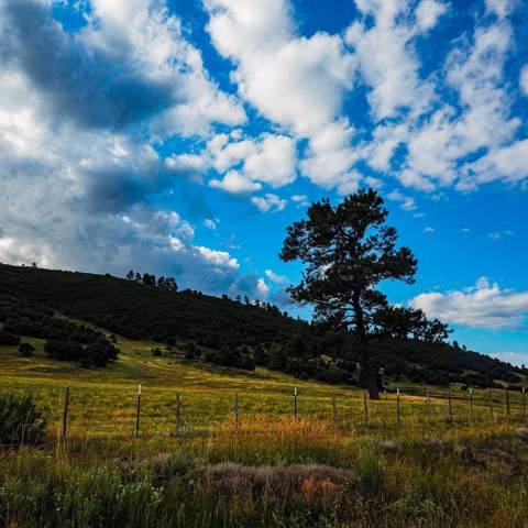 Hwy 84/64, Chama, NM 87520 (MLS #201904326) :: The Very Best of Santa Fe