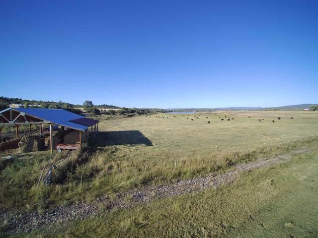 Hatchery Rd Farm, Los Ojos, NM 87575 (MLS #201904364) :: The Desmond Group