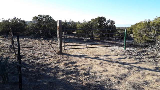 124 Rocinante, Cerrillos, NM 87010 (MLS #201904432) :: The Desmond Group