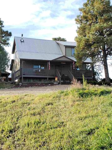 120 Elk Drive, Chama, NM 87520 (MLS #201904549) :: The Desmond Group