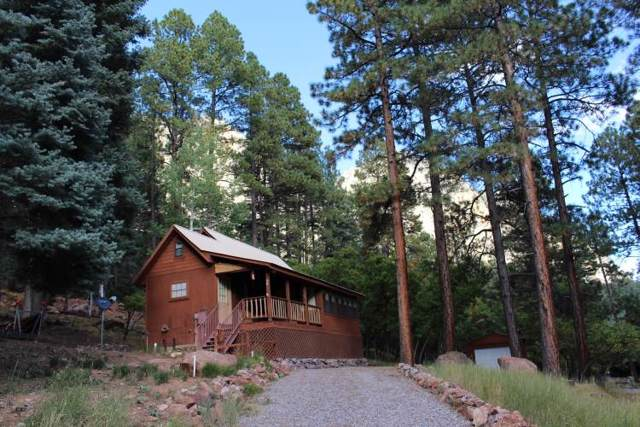 25 Falls Creek Road, Chama, NM 87520 (MLS #201904570) :: The Very Best of Santa Fe