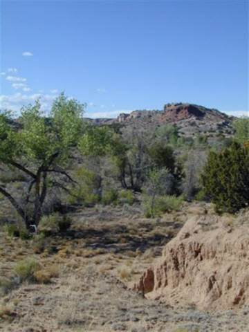 12 Fort Defina, Abiquiu, NM 87510 (MLS #201904581) :: The Very Best of Santa Fe