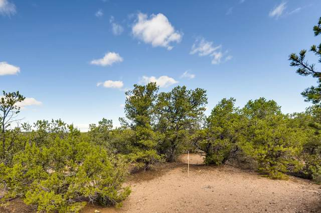1669 Via Bosque, Santa Fe, NM 87506 (MLS #201904594) :: The Desmond Group