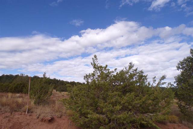 Camino Del Norte, Tajique, NM 87016 (MLS #201904623) :: The Desmond Group