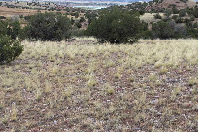 TBD Tract A, Pvt Drive 1725, Abiquiu, NM 87510 (MLS #201904671) :: The Very Best of Santa Fe