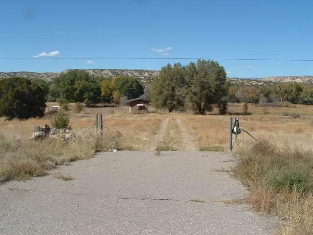 343 Highway 285, Ojo Caliente, NM 87549 (MLS #201904734) :: The Desmond Group