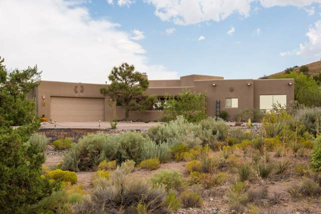 1 Seasons Circle, Placitas, NM 87043 (MLS #201904740) :: The Desmond Group