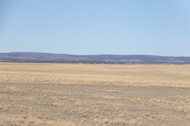 Myers Rd, Estancia, NM 87016 (MLS #201904760) :: The Desmond Group