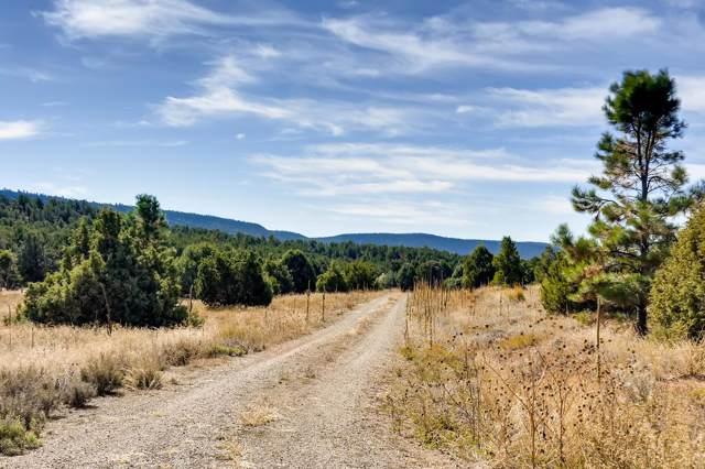 55 A Glorieta Ranch, Glorieta, NM 87535 (MLS #201904808) :: The Very Best of Santa Fe