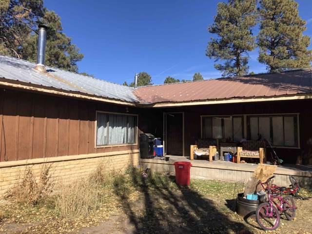 407 5th Street, Chama, NM 87520 (MLS #201904829) :: The Very Best of Santa Fe
