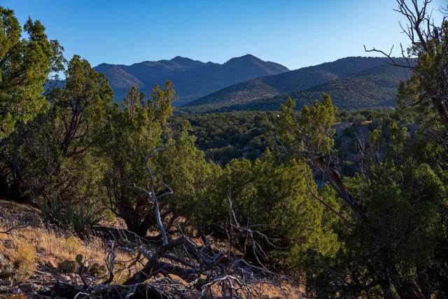 50 Rocinante, Cerrillos, NM 87010 (MLS #201904835) :: The Very Best of Santa Fe