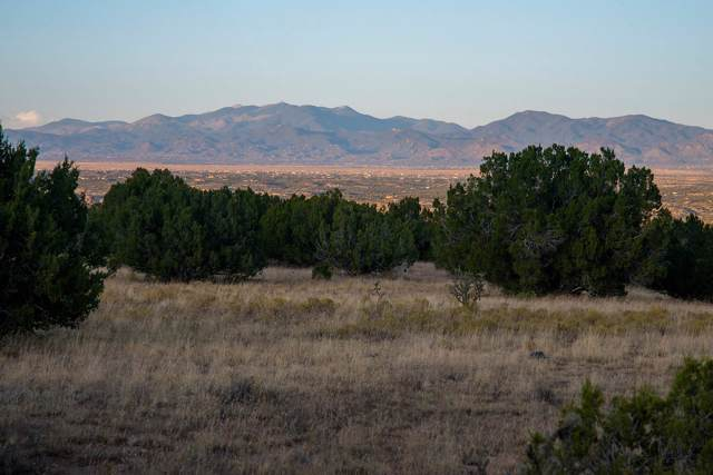 46 Silver Spur Trail, Cerrillos, NM 87010 (MLS #201904839) :: The Very Best of Santa Fe