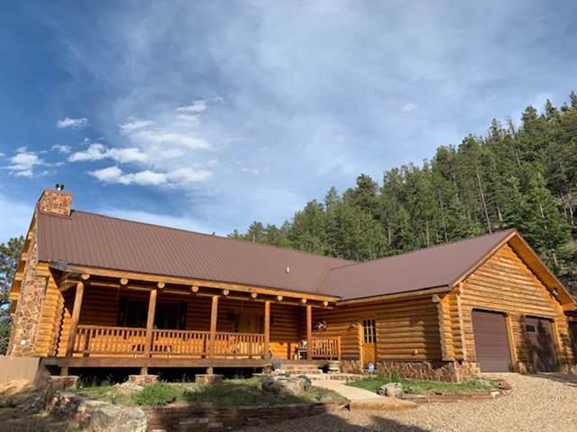 49 North Star Trail, Mora, NM 87732 (MLS #201904860) :: The Very Best of Santa Fe