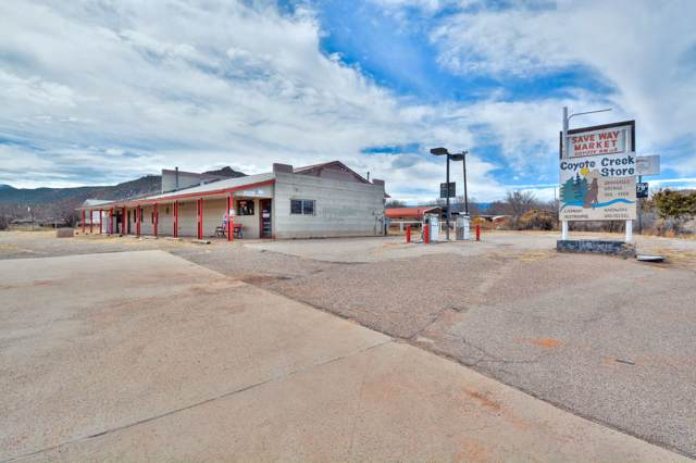 3386 Nm State Hwy 96, Coyote, NM 87012 (MLS #201904954) :: The Very Best of Santa Fe