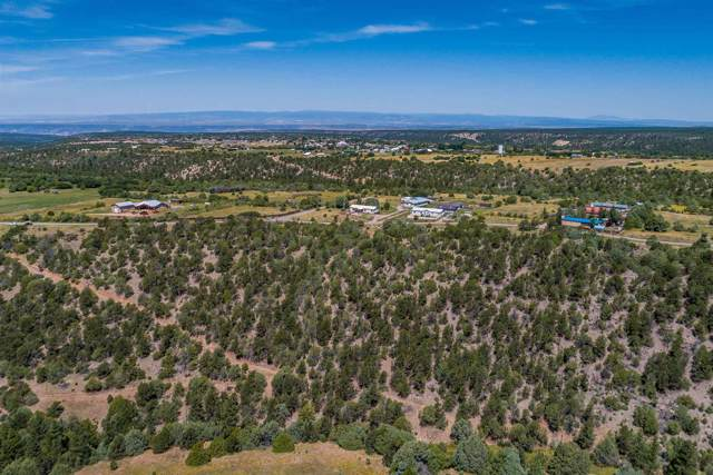 County Road 79 Tract F, Truchas, NM 87578 (MLS #201905066) :: The Desmond Group