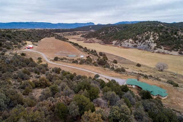 4150 State Road 112, Tierra Amarilla, NM 87575 (MLS #201905078) :: The Very Best of Santa Fe