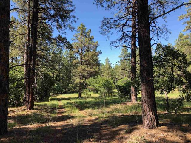 County Rd 328, Ensenada, NM 87575 (MLS #201905096) :: The Desmond Group