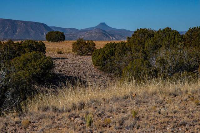 25 Hunter Drive, Medanales, NM 87548 (MLS #201905120) :: Summit Group Real Estate Professionals