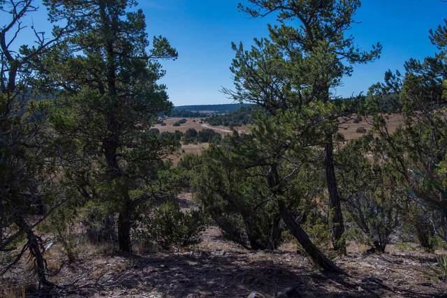 58 A Arroyo Salado, Santa Fe, NM 87508 (MLS #201905124) :: The Very Best of Santa Fe