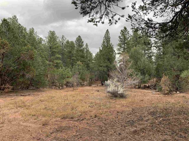 Lot 8 Pinon Ridge, Pecos, NM 87552 (MLS #201905178) :: The Desmond Group