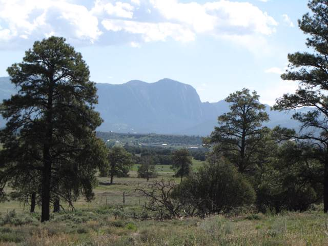 Garth Tract, Longhorn Estates, Los Ojos, NM 87551 (MLS #201905186) :: The Desmond Group