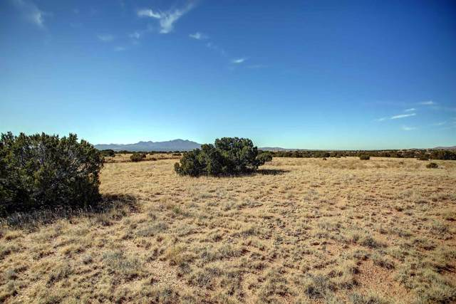 59 Crazy Rabbit Road, Santa Fe, NM 87508 (MLS #201905199) :: The Desmond Group
