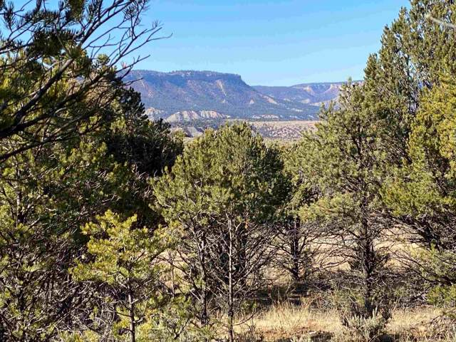 Unit 10, Tract 223, El Vado Lake, Tierra Amarilla, NM 87575 (MLS #201905225) :: The Desmond Group