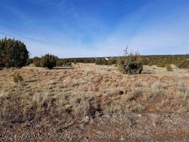 12 Paradise Road, Edgewood, NM 87015 (MLS #201905323) :: The Very Best of Santa Fe
