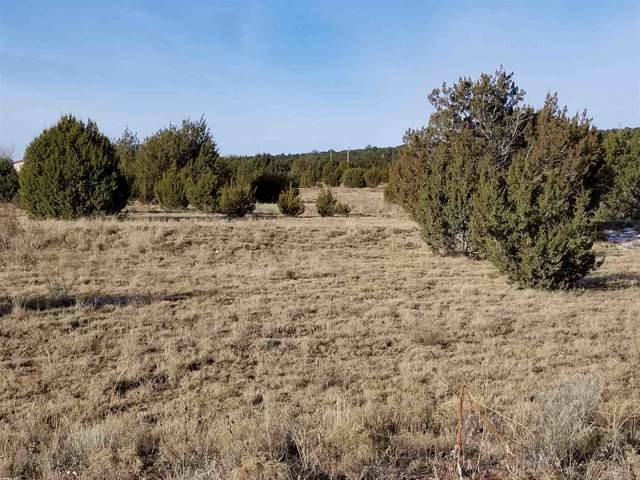 14A Paradise Rd, Edgewood, NM 87015 (MLS #201905327) :: The Very Best of Santa Fe