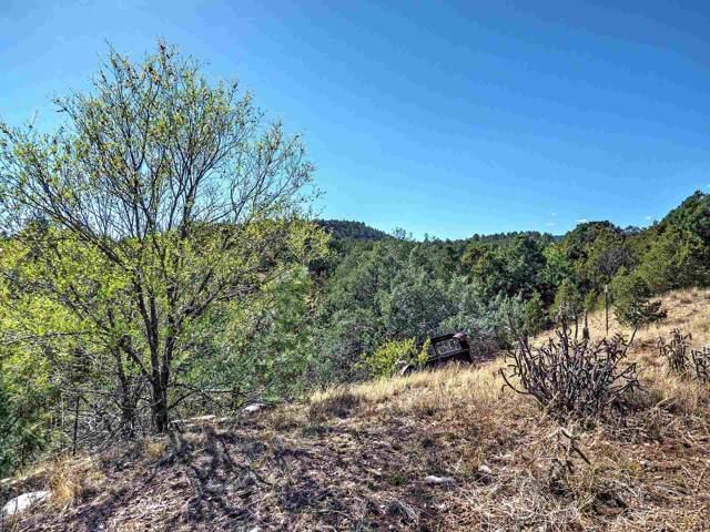 14 Flora Vista, Glorieta, NM 87535 (MLS #201905338) :: The Desmond Hamilton Group