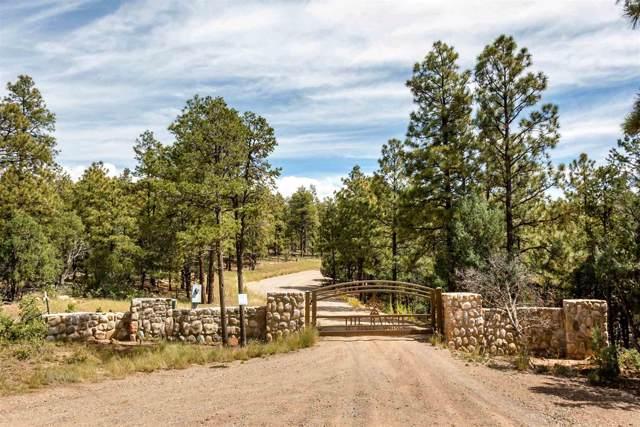 401 Glorieta Mesa, Glorieta, NM 87535 (MLS #201905362) :: Berkshire Hathaway HomeServices Santa Fe Real Estate