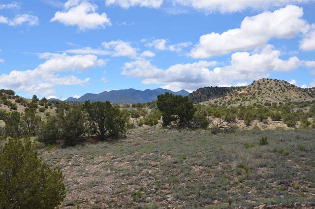 0 Trigg Trail, Madrid, NM 87010 (MLS #201905431) :: The Desmond Hamilton Group