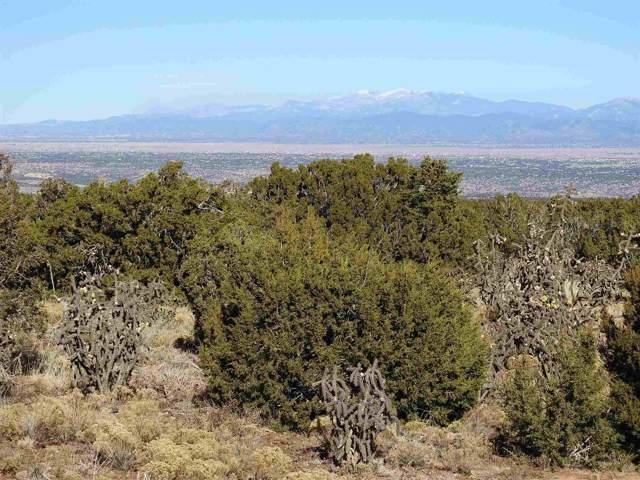 208 Wagon Trail, Cerrillos, NM 87010 (MLS #201905503) :: The Desmond Group
