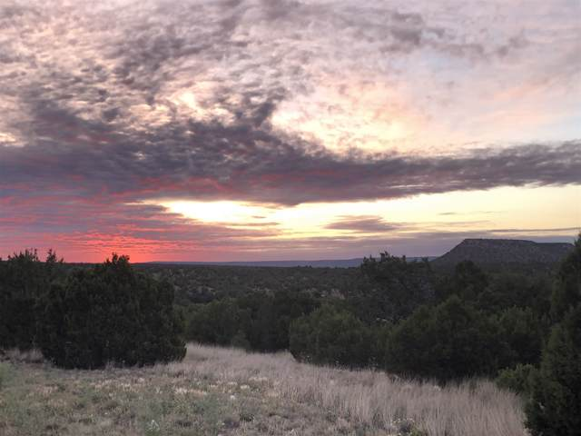 Lot 49 Pintada Loop Rd., Santa Rosa, NM 88435 (MLS #201905518) :: Stephanie Hamilton Real Estate