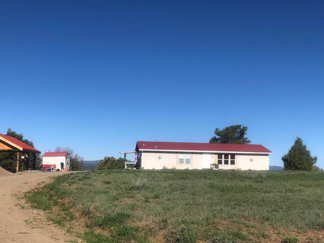 37 Rd 1783, Chama, NM 87520 (MLS #202000012) :: The Desmond Group