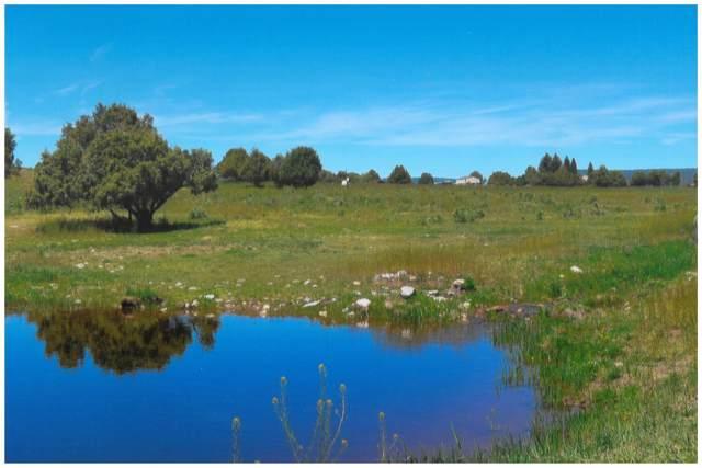 TBD Highway 95, Rutheron, NM 87551 (MLS #202000068) :: The Desmond Group