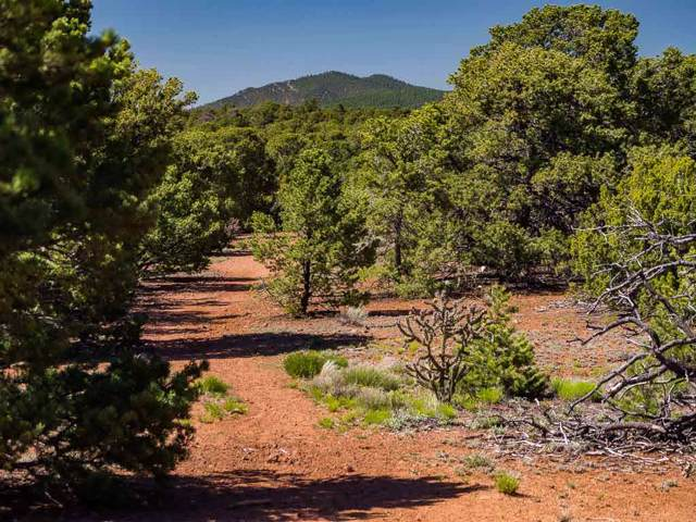 162 Apache Ridge, Santa Fe, NM 87508 (MLS #202000074) :: Summit Group Real Estate Professionals