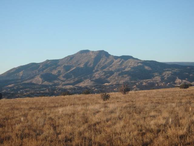 26 Hunter, Medanales, NM 87549 (MLS #202000125) :: The Desmond Hamilton Group