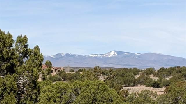 50 Via Pampa, Santa Fe, NM 87506 (MLS #202000130) :: The Desmond Hamilton Group