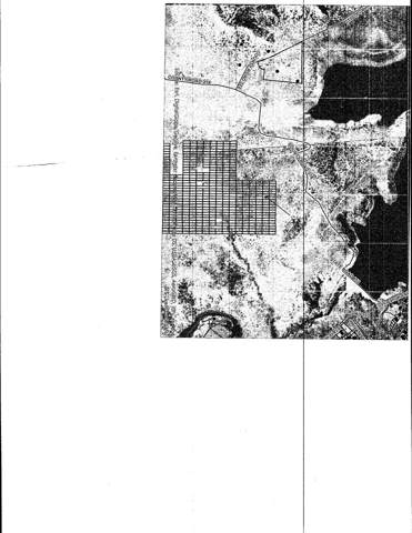 Lot 1 Block B Lot 1, Tierra Amarilla, NM 87575 (MLS #202000132) :: The Desmond Group