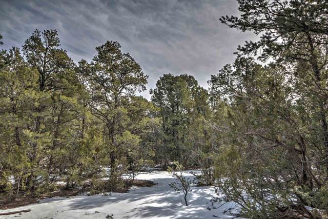 0 Lot 1068091130108 Off County Road B65 Pecos, Pecos, NM 87552 (MLS #202000176) :: The Desmond Group