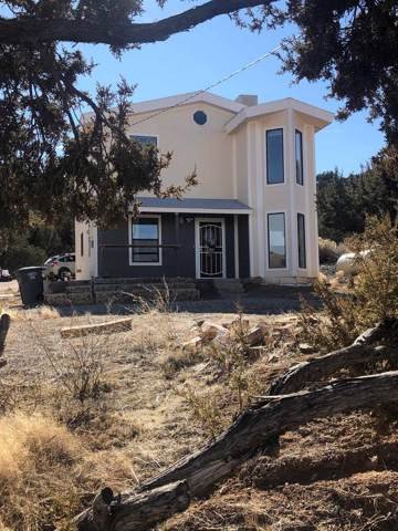 2898 State Highway 14, Madrid, NM 87010 (MLS #202000314) :: The Desmond Hamilton Group