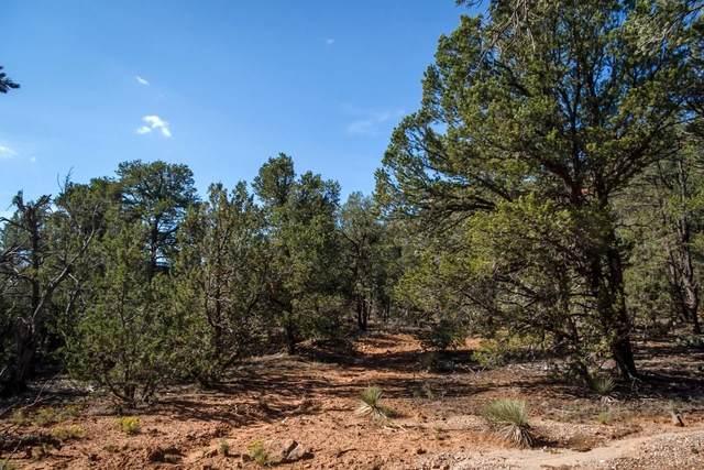 1 Half Moon Trail, Rowe, NM 87562 (MLS #202000428) :: Berkshire Hathaway HomeServices Santa Fe Real Estate