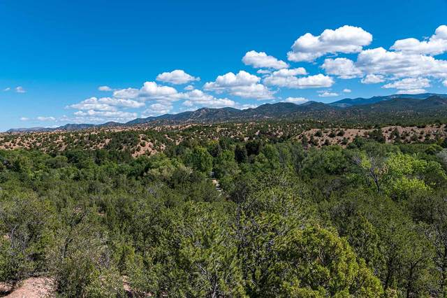4 Via Vecino, Santa Fe, NM 87506 (MLS #202000444) :: The Desmond Hamilton Group