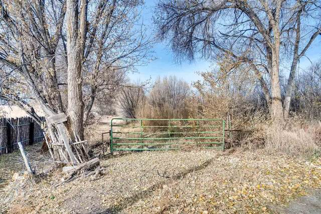 1334 N Mccurdy Rd, Espanola, NM 87532 (MLS #202000490) :: The Desmond Hamilton Group