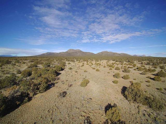 125 Cow Mill Rd, Stanley, NM 87056 (MLS #202000506) :: The Desmond Hamilton Group