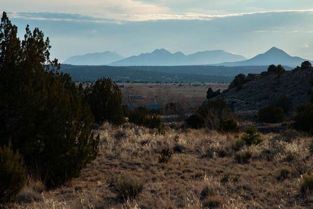 37 Camino Libre, Galisteo, NM 87540 (MLS #202000514) :: The Very Best of Santa Fe