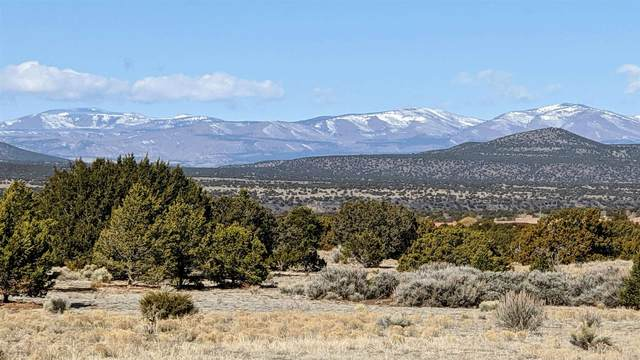 103 Calle Ventoso West, Lot 860, Santa Fe, NM 87506 (MLS #202000578) :: The Desmond Hamilton Group