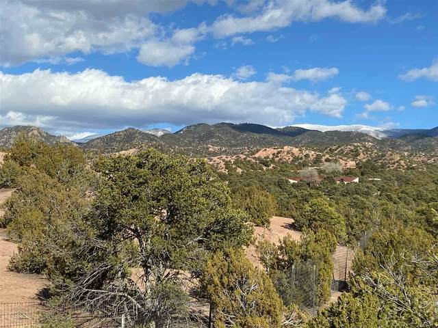 20 Cerro De Palomas, Santa Fe, NM 87506 (MLS #202000588) :: The Desmond Hamilton Group